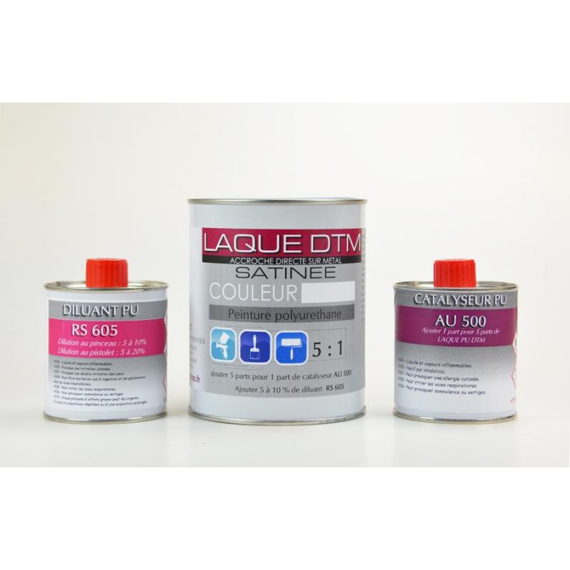Peinture polyuréthane satinée en Kit blanc ou noir
